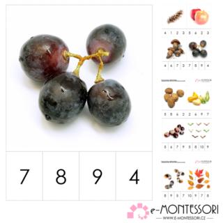 Montessori karty - podzimní počítání do deseti