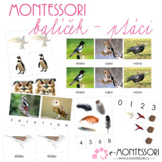 Montessori karty Ptáci (balíček)